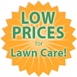 Low prices for lawn care custom t-shirts medallion