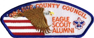 Eagle Flight Embroidered Patch Design Idea