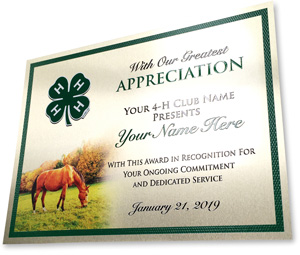 4-h real metal plate plaque