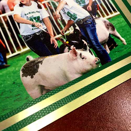 4-h plaque image showing tiny details of photo