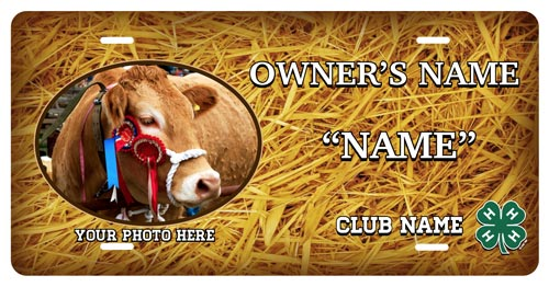 4-h Beef Cattle Stall Tag