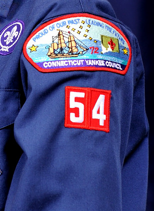 Cub Scout left sleeve