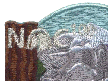 zoomed in version of nights of camping patch to show embroidery quality