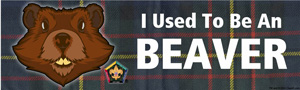 wood badge beaver bumper sticker