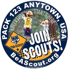 Join Cub Scouts window sticker