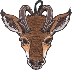 Wood badge antelope critter head patch