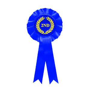 dual ribbon with rosette for scout awards and events